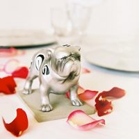 wedding-bulldogv